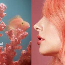 Living Coral: il colore 2019