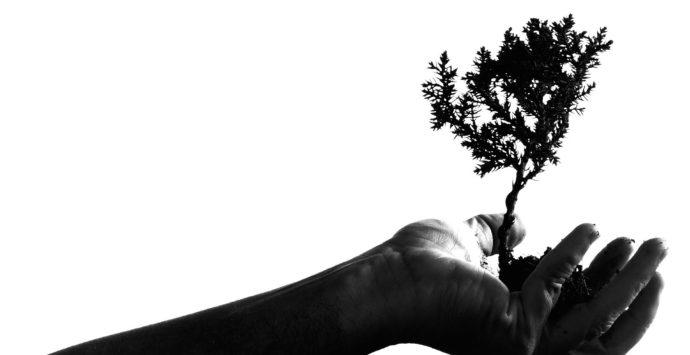 2020: il futuro è nelle tue mani – Francesco Cirignotta