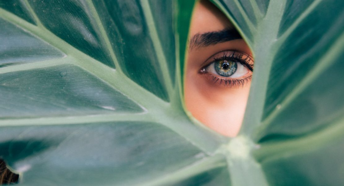 Green Beauty: la matita diventa una pianta